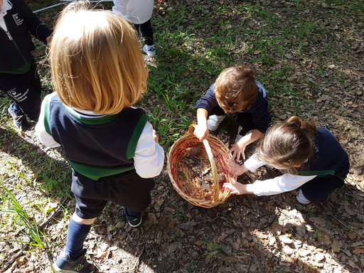Nursery make the most of the outdoor classroom