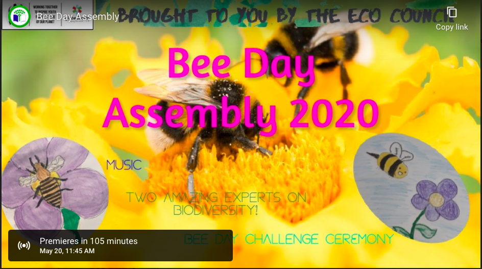World Bee Day Assembly - YouTube